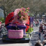 Bulbflower Parade