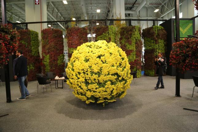 Eurasia Plant Fair/Flower Show Istanbul